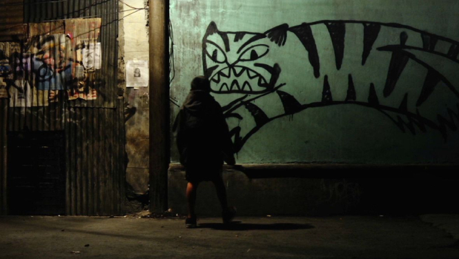 tigers not afraid 2017